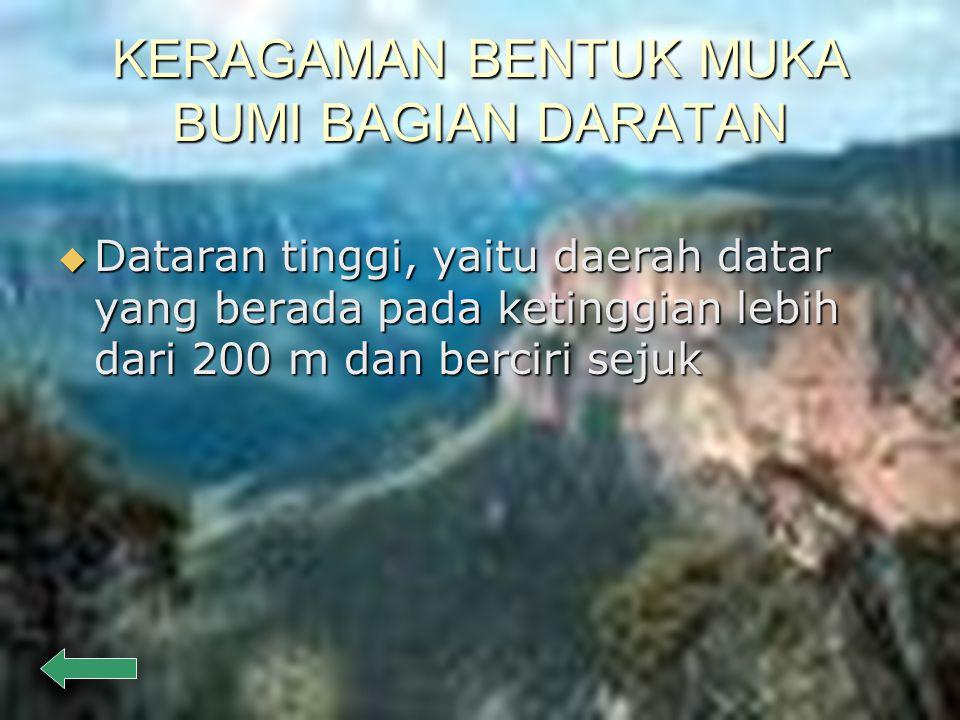 KERAGAMAN BENTUK MUKA BUMI BAGIAN DARATAN  Dataran rendah, yaitu daerah datar yang berada pada ketinggian kurang dari 200 m dari permukaan laut.  Mi