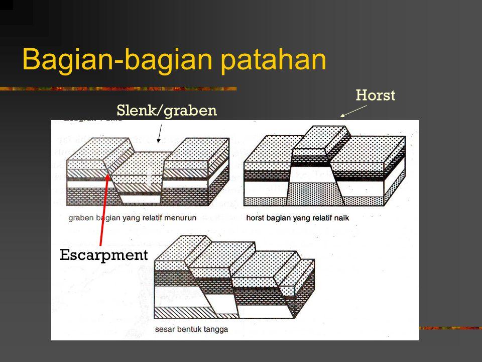 L. Tegak: karena tenaga radial = tenaga tangensial L. Miring: tenaga radial < tenaga tangensial L. Menggantung: tenaga tangensial > tenaga radial dan