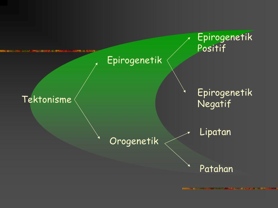 Tektonisme Tektonik : tenaga yang bekerja dari dalam bumi dengan arah vertikal maupun lateral yang mengakibatkan perubahan lokasi atau letak lapisan b