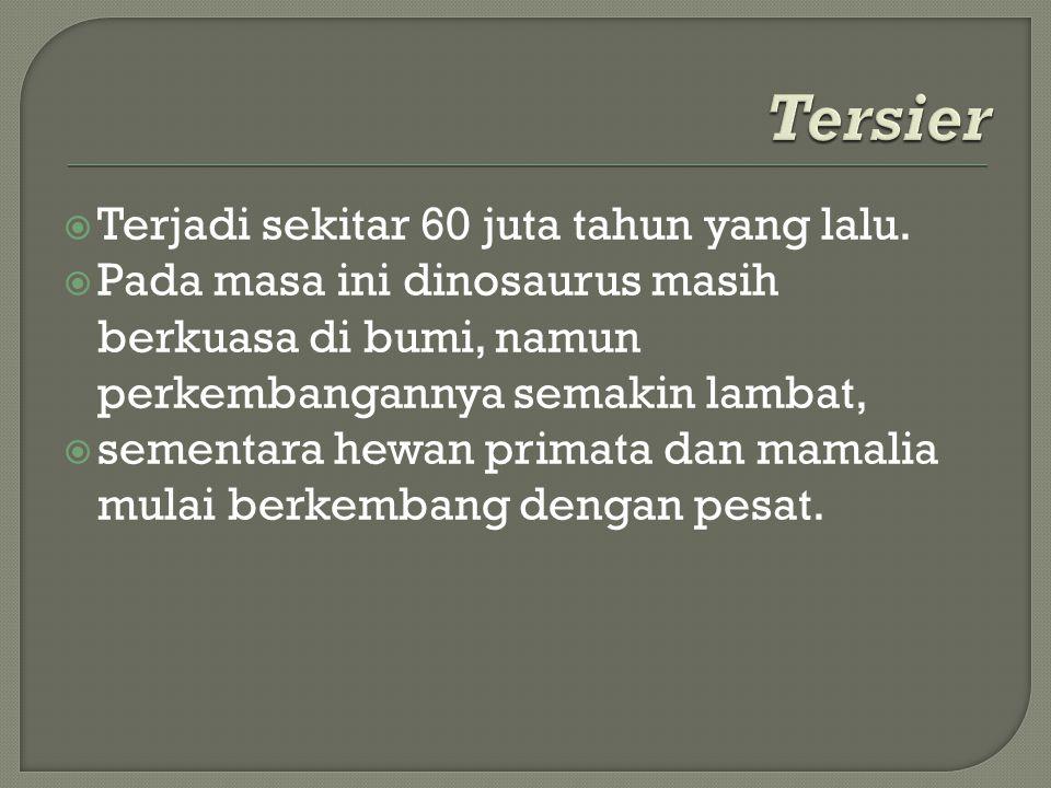  Terjadi sekitar 60 juta tahun yang lalu.  Pada masa ini dinosaurus masih berkuasa di bumi, namun perkembangannya semakin lambat,  sementara hewan