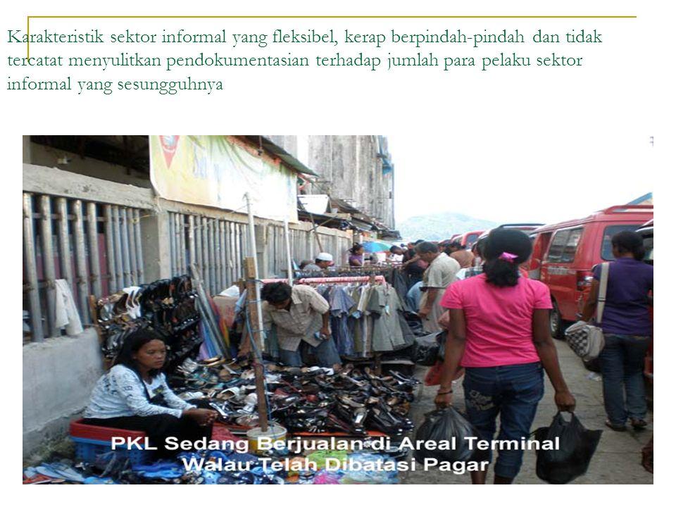 Karakteristik sektor informal yang fleksibel, kerap berpindah-pindah dan tidak tercatat menyulitkan pendokumentasian terhadap jumlah para pelaku sekto