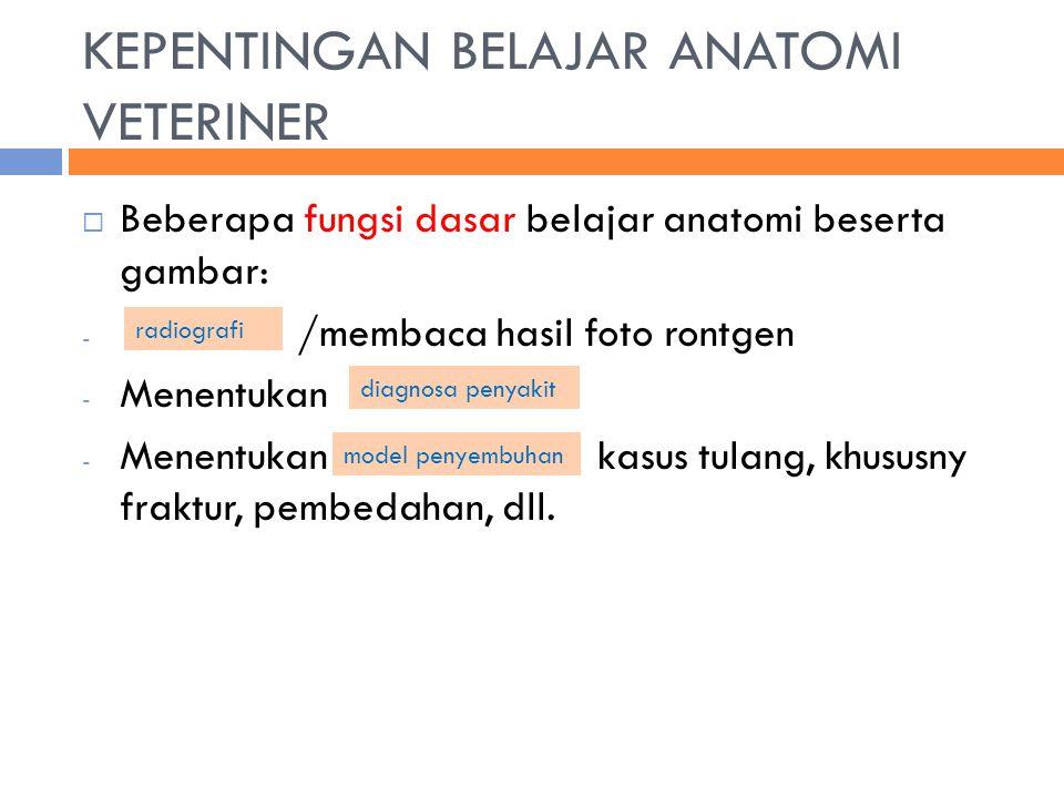 KEPENTINGAN BELAJAR ANATOMI VETERINER  Beberapa fungsi dasar belajar anatomi beserta gambar: - /membaca hasil foto rontgen - Menentukan - Menentukan