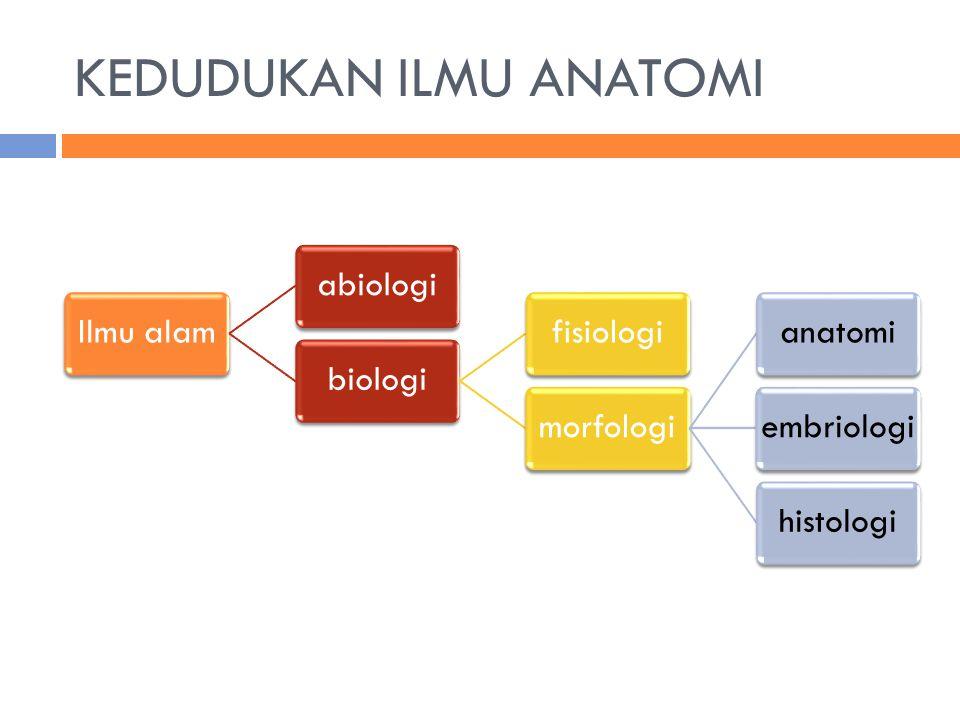 KEDUDUKAN ILMU ANATOMI Ilmu alamabiologibiologifisiologimorfologianatomiembriologihistologi
