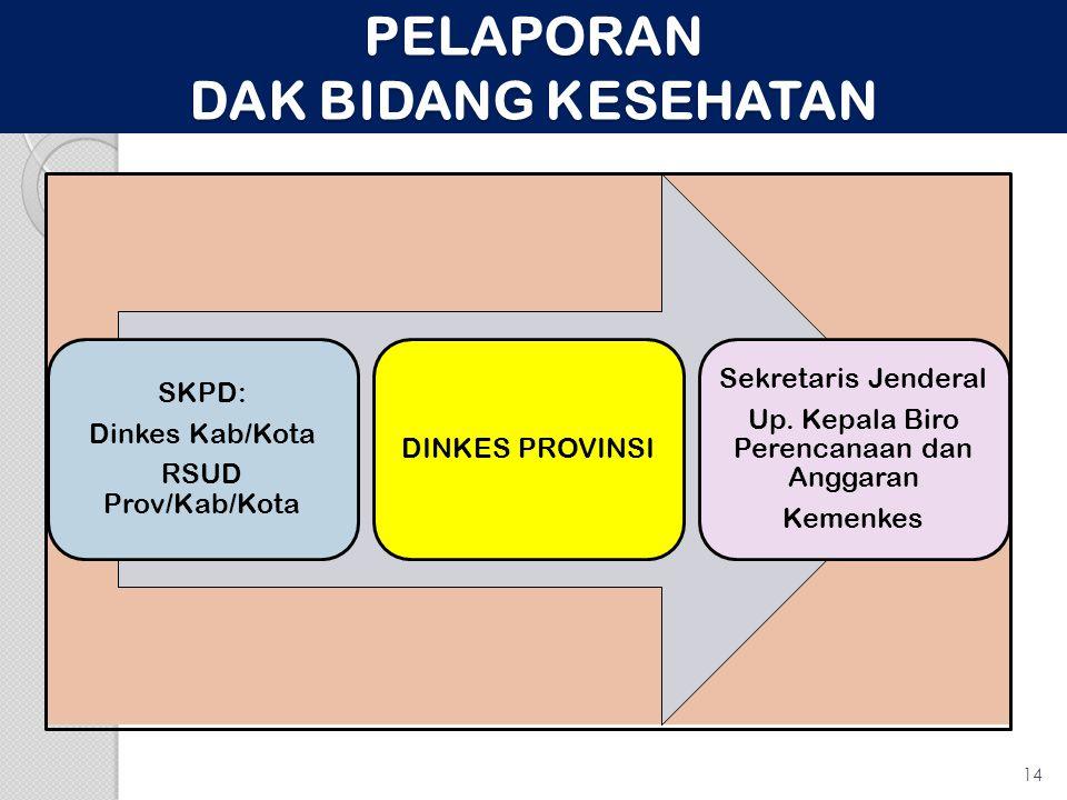 PELAPORAN DAK BIDANG KESEHATAN SKPD: Dinkes Kab/Kota RSUD Prov/Kab/Kota DINKES PROVINSI Sekretaris Jenderal Up.