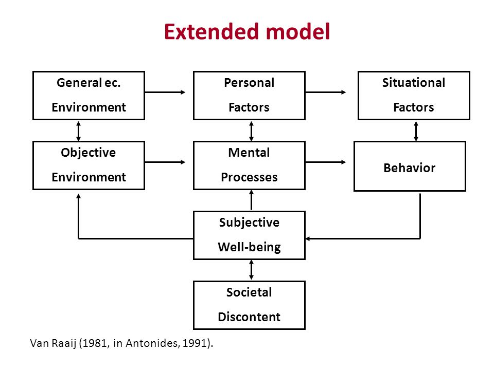 Extended model Van Raaij (1981, in Antonides, 1991). General ec. Environment Personal Factors Situational Factors Objective Environment Mental Process