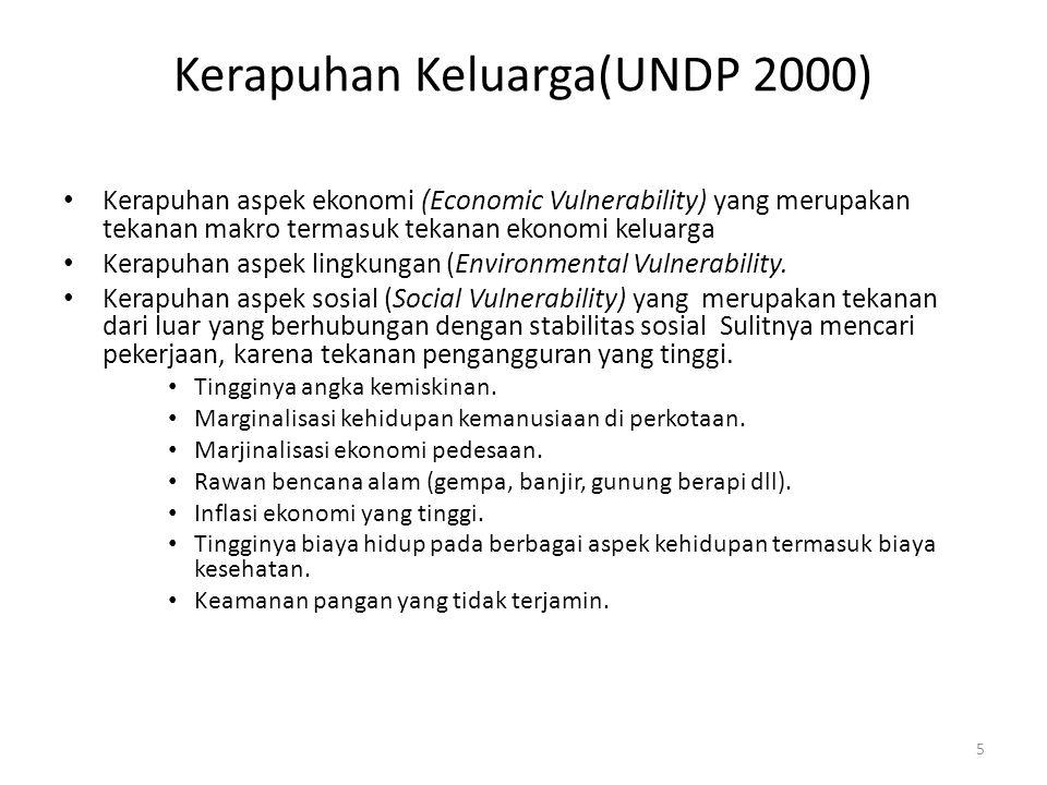 Kerapuhan Keluarga(UNDP 2000) Kerapuhan aspek ekonomi (Economic Vulnerability) yang merupakan tekanan makro termasuk tekanan ekonomi keluarga Kerapuhan aspek lingkungan (Environmental Vulnerability.