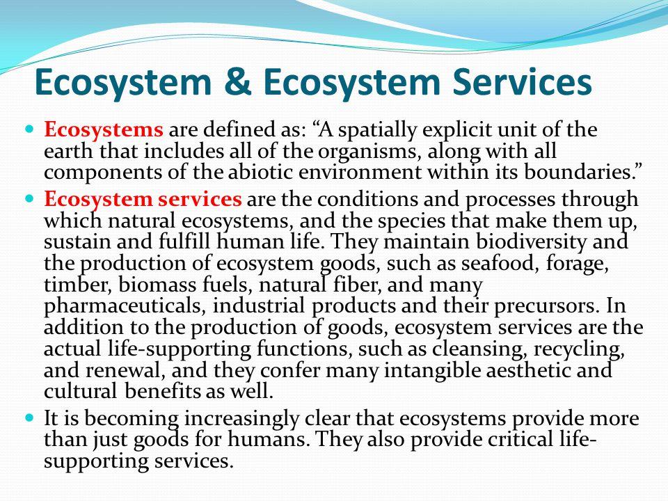 Ecosystem Services Daily (1997) mengkategorikan ecosystems services menjadi tiga komponent: provisioning; regulating; and enriching/cultural.