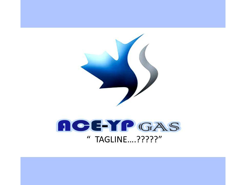 OUR PROFILE ACE-YP Gas Company merupakan perusahaan nasional yang pertama memiliki jaringan proses terpadu mulai dari tahap eksplorasi, drilling, produksi, storage, hingga distribusi gas alam dan LPG.