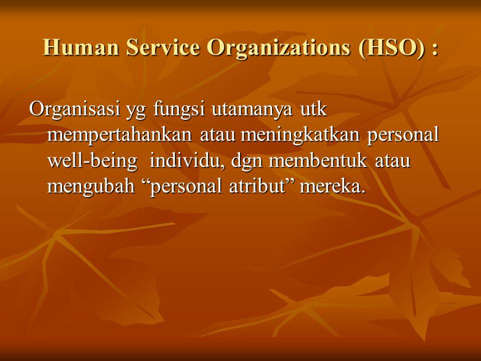 Human Service Organizations (HSO) : Organisasi yg fungsi utamanya utk mempertahankan atau meningkatkan personal well-being individu, dgn membentuk ata