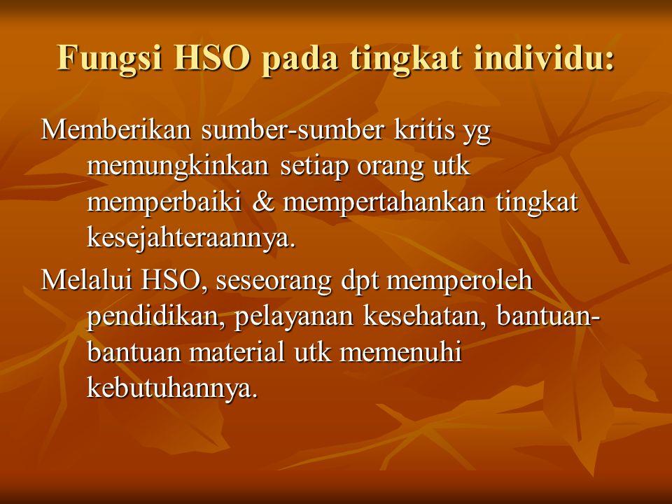 Fungsi HSO pada tingkat individu: Memberikan sumber-sumber kritis yg memungkinkan setiap orang utk memperbaiki & mempertahankan tingkat kesejahteraann