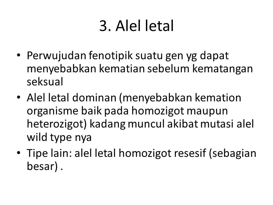 3. Alel letal Perwujudan fenotipik suatu gen yg dapat menyebabkan kematian sebelum kematangan seksual Alel letal dominan (menyebabkan kemation organis