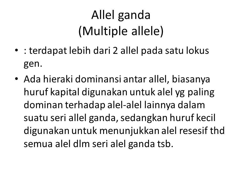 Allel ganda (Multiple allele) : terdapat lebih dari 2 allel pada satu lokus gen.
