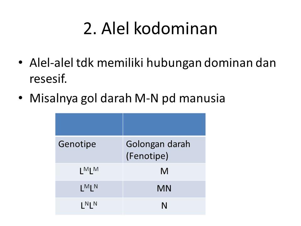 2. Alel kodominan Alel-alel tdk memiliki hubungan dominan dan resesif. Misalnya gol darah M-N pd manusia GenotipeGolongan darah (Fenotipe) LMLMLMLM M