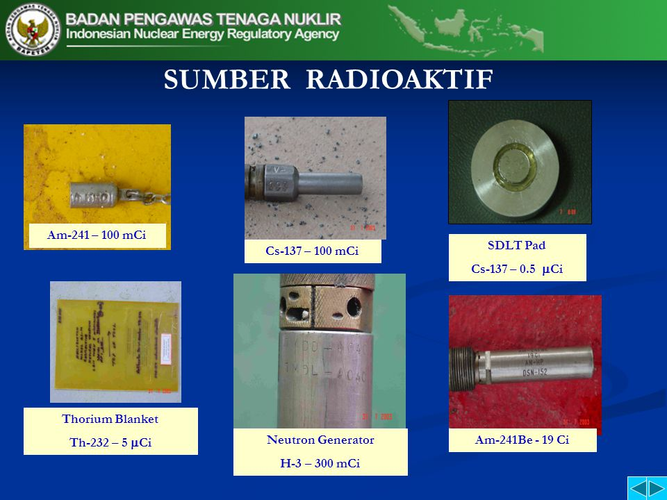 SUMBER RADIOAKTIF Am-241 – 100 mCi Cs-137 – 100 mCi SDLT Pad Cs-137 – 0.5  Ci Thorium Blanket Th-232 – 5  Ci Neutron Generator H-3 – 300 mCi Am-241Be - 19 Ci