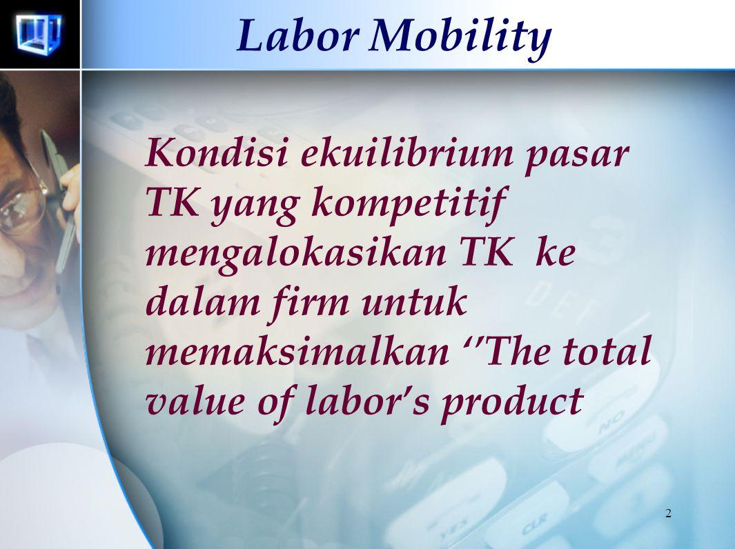Labor Mobility Labor Economics Series