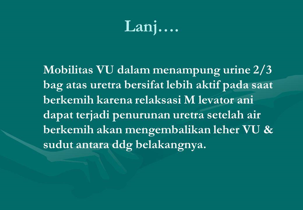 Lanj…. Mobilitas VU dalam menampung urine 2/3 bag atas uretra bersifat lebih aktif pada saat berkemih karena relaksasi M levator ani dapat terjadi pen
