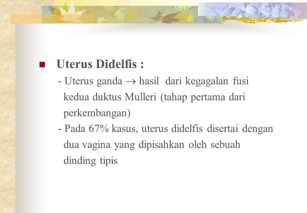 Uterus Didelfis : - Uterus ganda  hasil dari kegagalan fusi kedua duktus Mulleri (tahap pertama dari perkembangan) - Pada 67% kasus, uterus didelfis disertai dengan dua vagina yang dipisahkan oleh sebuah dinding tipis