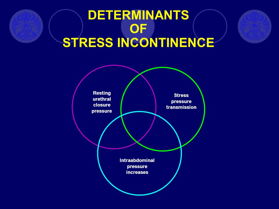DETERMINANTS OF STRESS INCONTINENCE Resting urethral closure pressure Stress pressure transmission Intraabdominal pressure increases