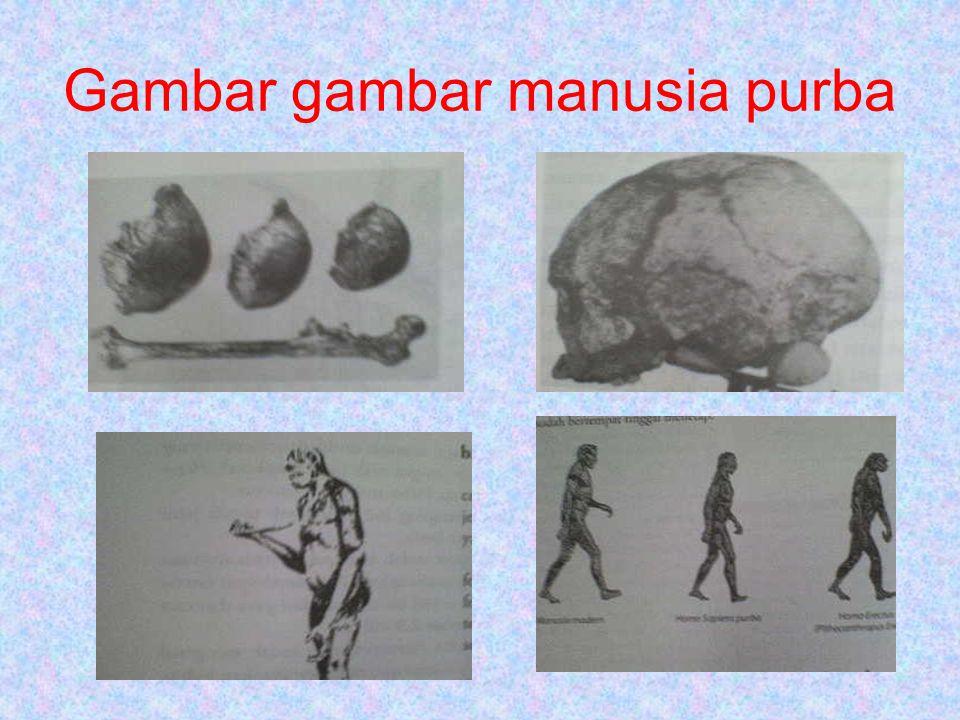 Gambar gambar manusia purba