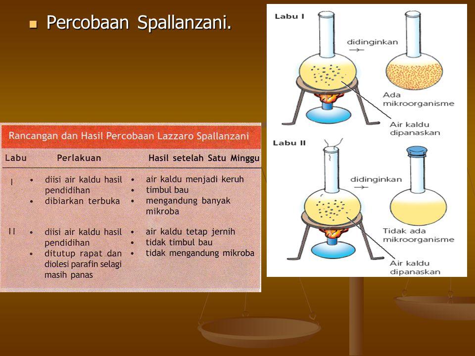 Percobaan Spallanzani. Percobaan Spallanzani.