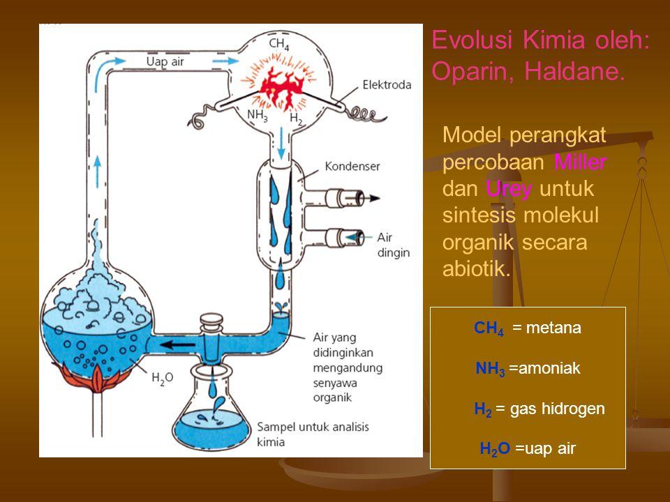 Model perangkat percobaan Miller dan Urey untuk sintesis molekul organik secara abiotik.
