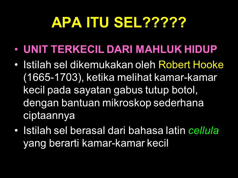 APA ITU SEL????? UNIT TERKECIL DARI MAHLUK HIDUP Istilah sel dikemukakan oleh Robert Hooke (1665-1703), ketika melihat kamar-kamar kecil pada sayatan