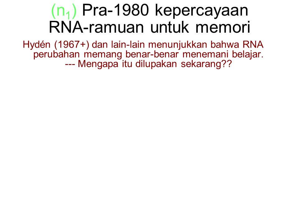 (n 1 ) Pra-1980 kepercayaan RNA-ramuan untuk memori Hydén (1967+) dan lain-lain menunjukkan bahwa RNA perubahan memang benar-benar menemani belajar.
