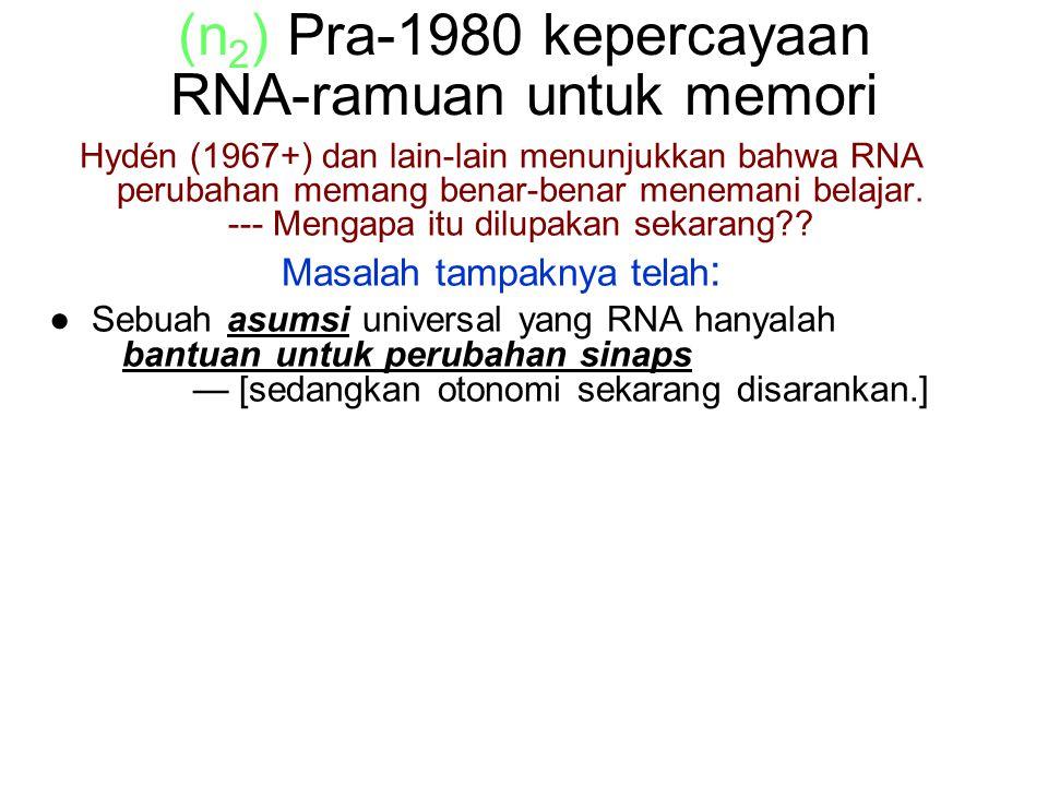 (n 2 ) Pra-1980 kepercayaan RNA-ramuan untuk memori Hydén (1967+) dan lain-lain menunjukkan bahwa RNA perubahan memang benar-benar menemani belajar.