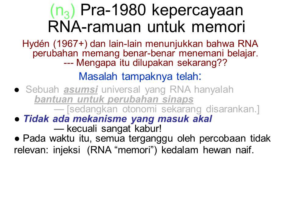 (n 3 ) Pra-1980 kepercayaan RNA-ramuan untuk memori Hydén (1967+) dan lain-lain menunjukkan bahwa RNA perubahan memang benar-benar menemani belajar.