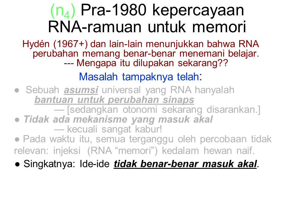 (n 4 ) Pra-1980 kepercayaan RNA-ramuan untuk memori Hydén (1967+) dan lain-lain menunjukkan bahwa RNA perubahan memang benar-benar menemani belajar.