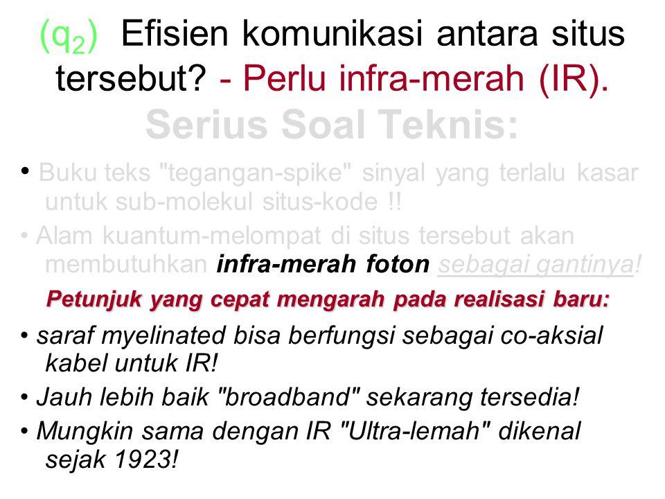 (q 2 ) Efisien komunikasi antara situs tersebut.- Perlu infra-merah (IR).