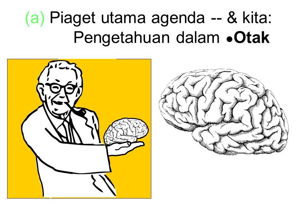 (a) Piaget utama agenda -- & kita: xxxxx Pengetahuan dalam ● Otak