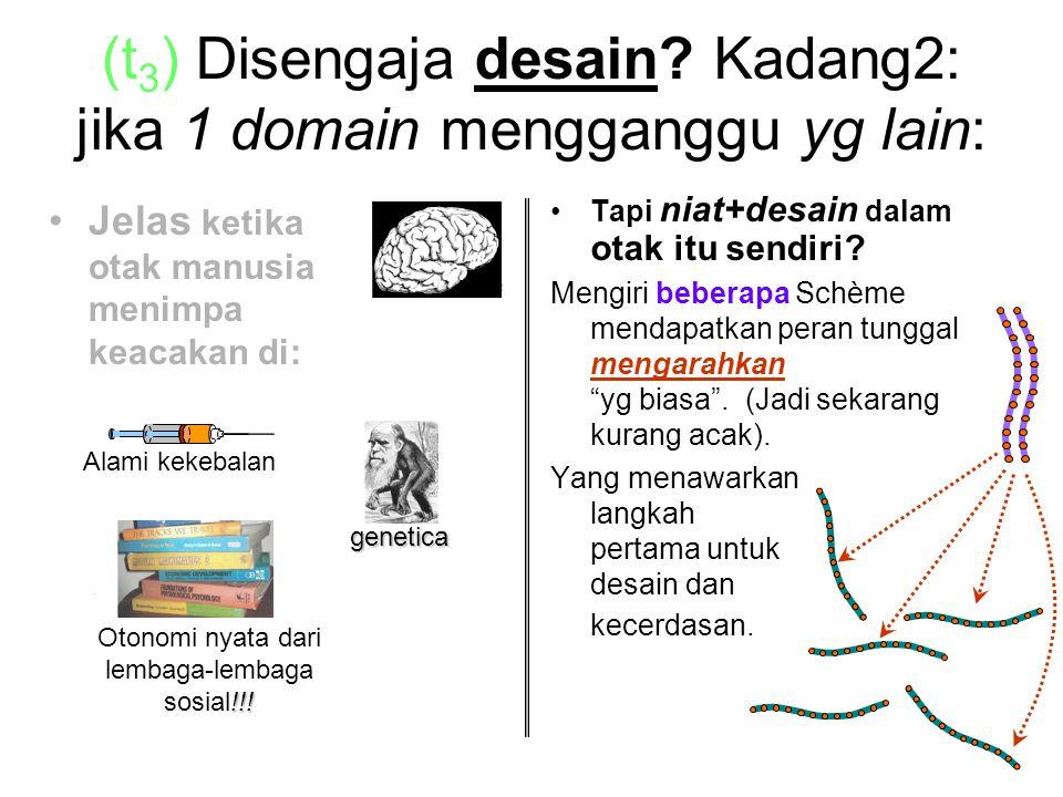 (t 3 ) Disengaja desain.