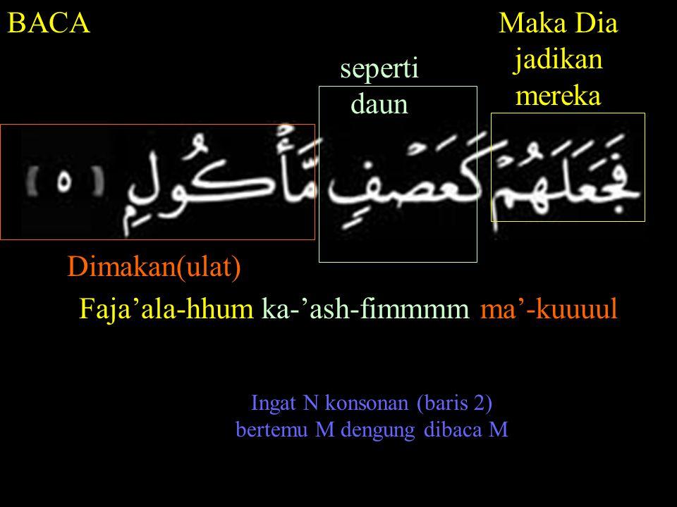 BACAMaka Dia jadikan mereka seperti daun Dimakan(ulat) Faja'ala-hhum ka-'ash-fimmmm ma'-kuuuul Ingat N konsonan (baris 2) bertemu M dengung dibaca M