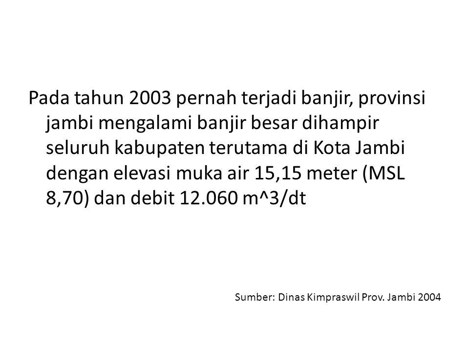 Pada tahun 2003 pernah terjadi banjir, provinsi jambi mengalami banjir besar dihampir seluruh kabupaten terutama di Kota Jambi dengan elevasi muka air