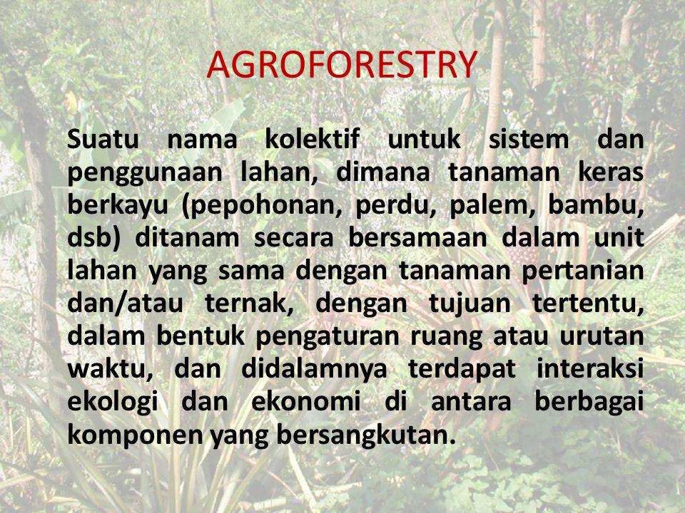 AGROFORESTRY Suatu nama kolektif untuk sistem dan penggunaan lahan, dimana tanaman keras berkayu (pepohonan, perdu, palem, bambu, dsb) ditanam secara