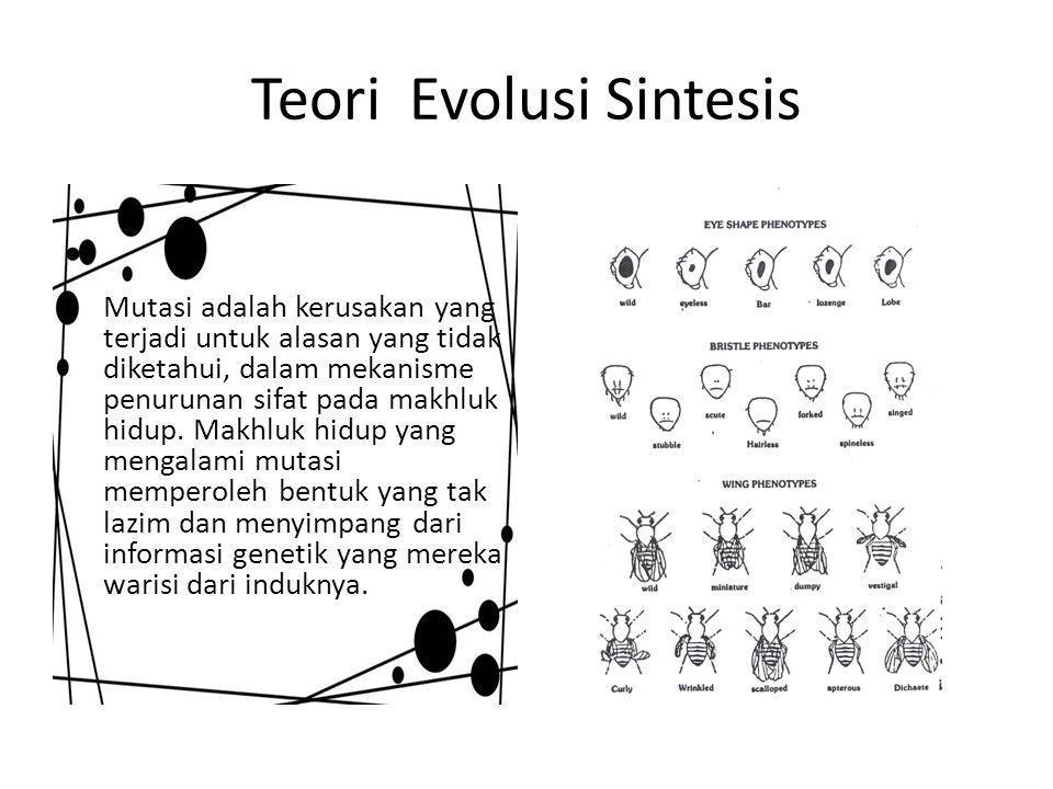 Teori Evolusi Sintesis Mutasi adalah kerusakan yang terjadi untuk alasan yang tidak diketahui, dalam mekanisme penurunan sifat pada makhluk hidup.