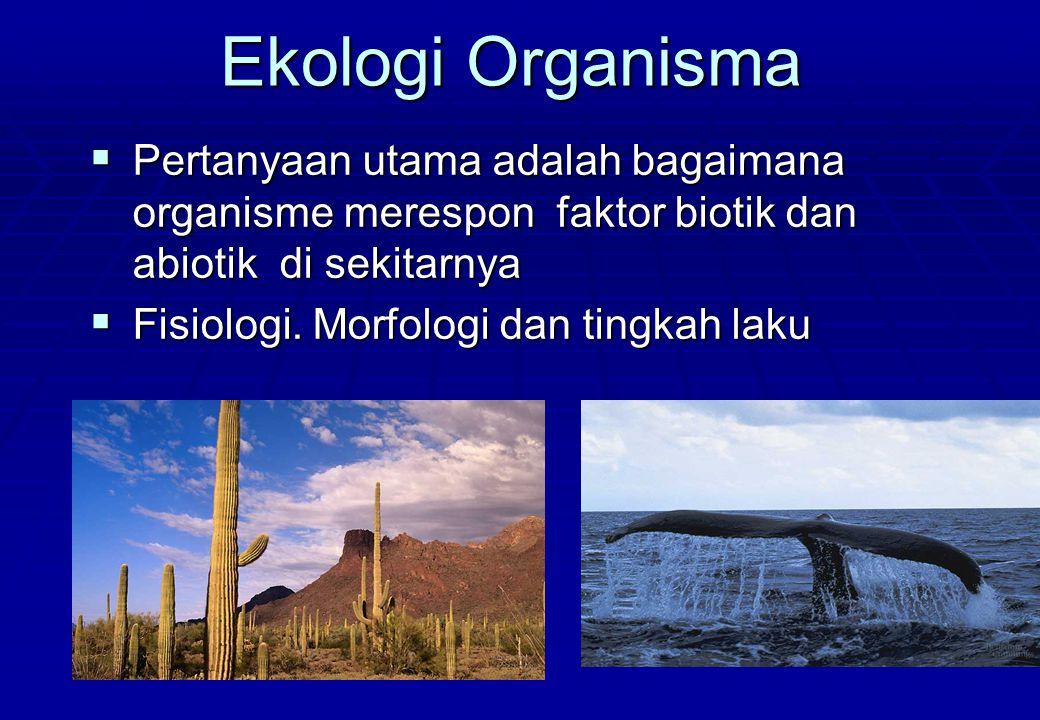 Ekologi Organisma  Pertanyaan utama adalah bagaimana organisme merespon faktor biotik dan abiotik di sekitarnya  Fisiologi. Morfologi dan tingkah la