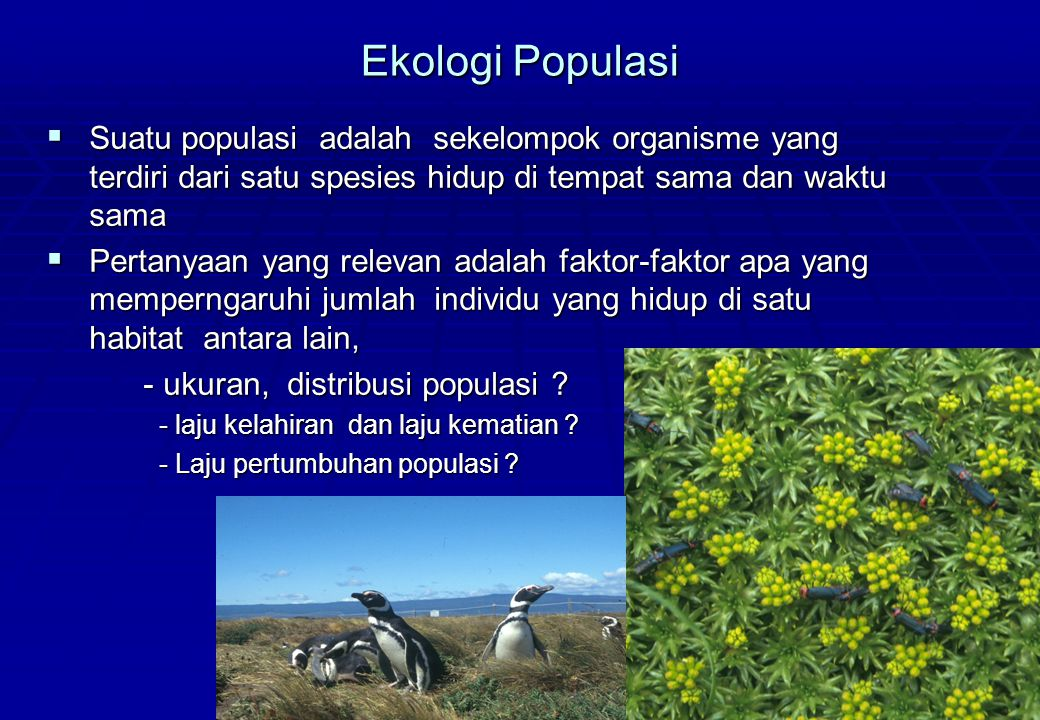 Ekologi Populasi  Suatu populasi adalah sekelompok organisme yang terdiri dari satu spesies hidup di tempat sama dan waktu sama  Pertanyaan yang rel