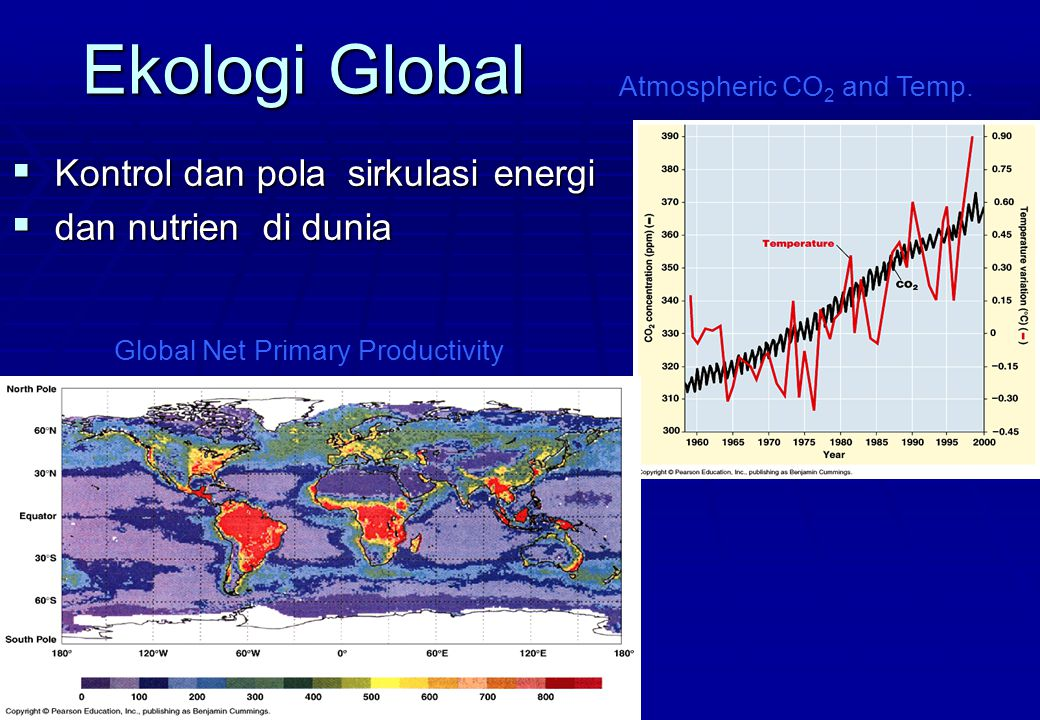 Ekologi Global  Kontrol dan pola sirkulasi energi  dan nutrien di dunia Global Net Primary Productivity Atmospheric CO 2 and Temp.