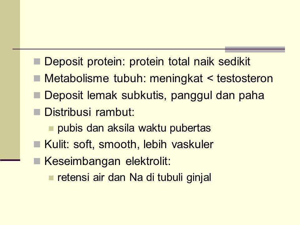 Deposit protein: protein total naik sedikit Metabolisme tubuh: meningkat < testosteron Deposit lemak subkutis, panggul dan paha Distribusi rambut: pub