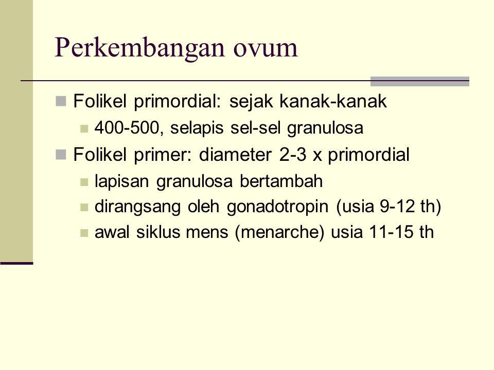 Perkembangan ovum Folikel primordial: sejak kanak-kanak 400-500, selapis sel-sel granulosa Folikel primer: diameter 2-3 x primordial lapisan granulosa
