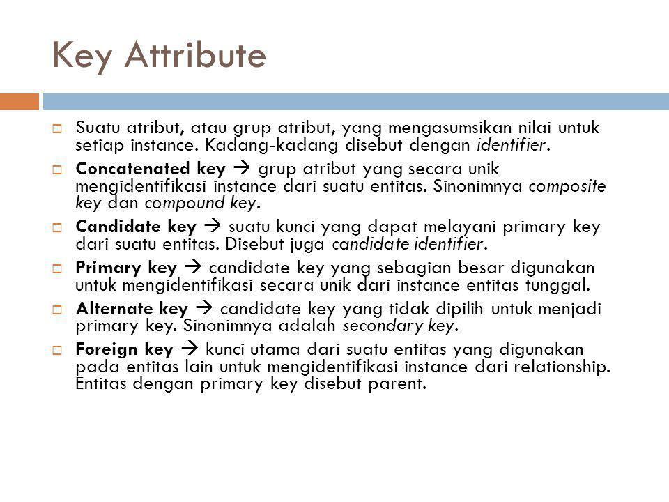 Key Attribute  Suatu atribut, atau grup atribut, yang mengasumsikan nilai untuk setiap instance. Kadang-kadang disebut dengan identifier.  Concatena