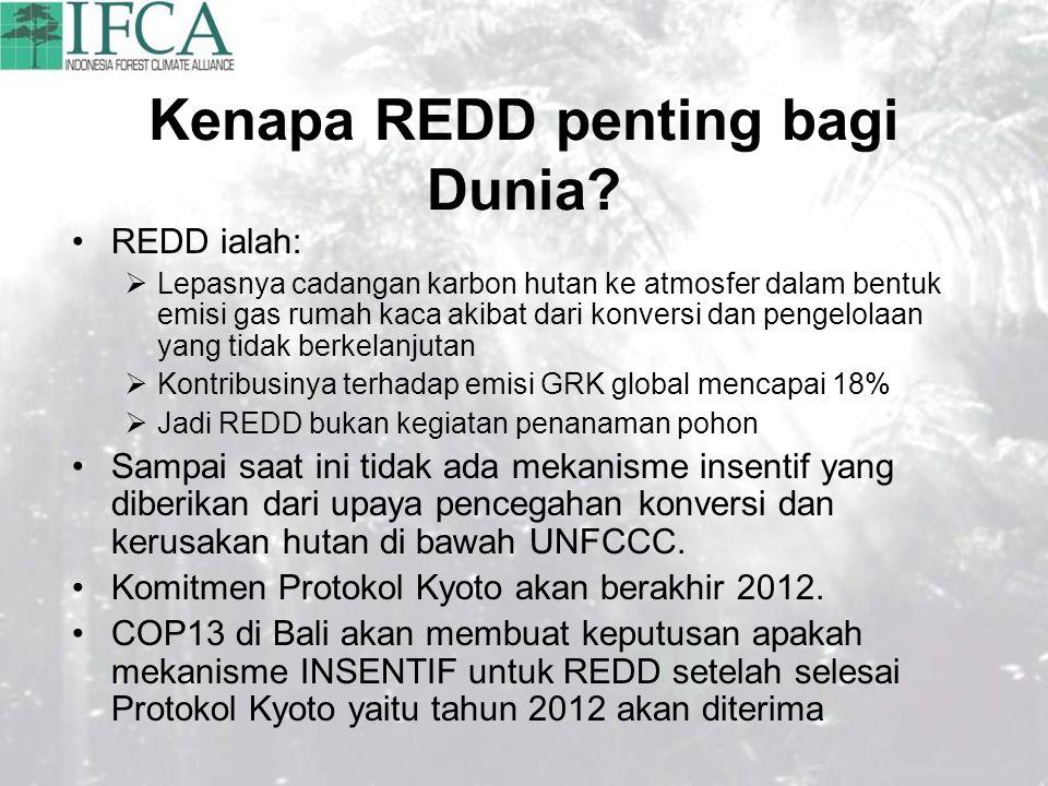 Kenapa REDD penting bagi Dunia.
