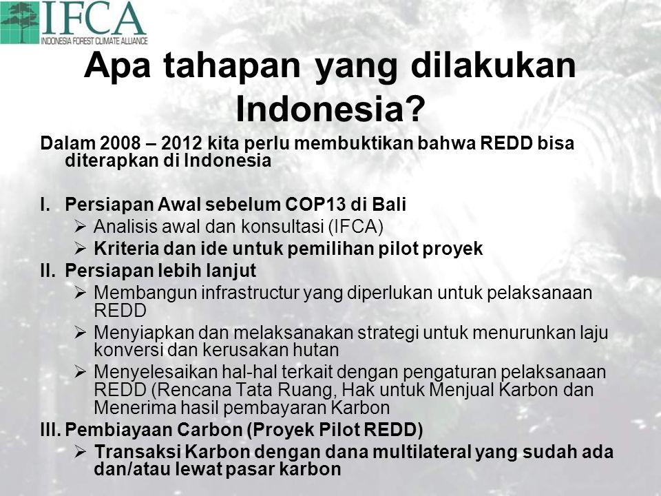 Apa tahapan yang dilakukan Indonesia.