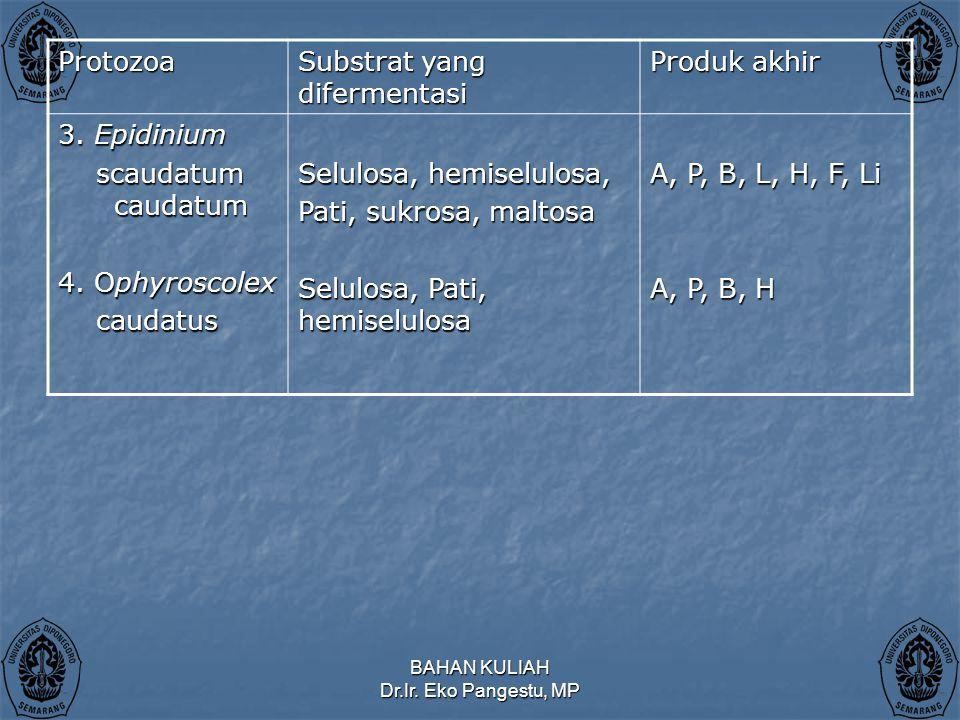BAHAN KULIAH Dr.Ir.Eko Pangestu, MP Protozoa Substrat yang difermentasi Produk akhir 3.