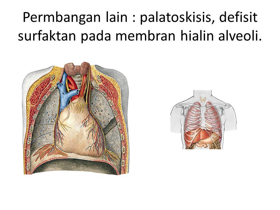 Permbangan lain : palatoskisis, defisit surfaktan pada membran hialin alveoli.