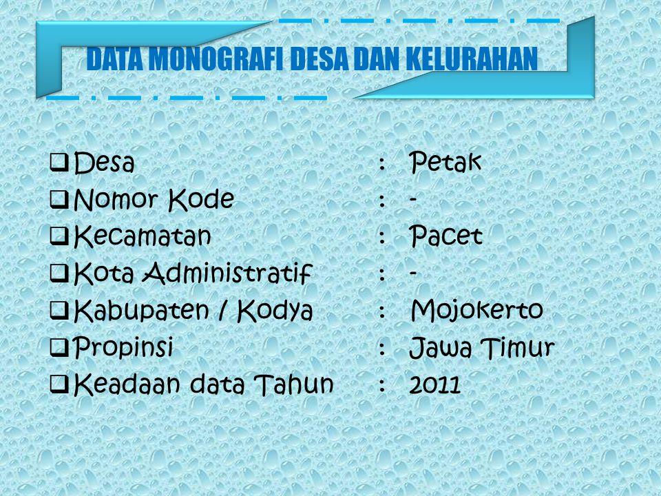 Tahun 2004 Pengaspalan jalan tembus Petak-Kesiman Tengah (APBN). Tahun 2004 Pembangunan Polindes dan Gudang (Swadaya). Tahun 2005 Pembenahan Kantor De