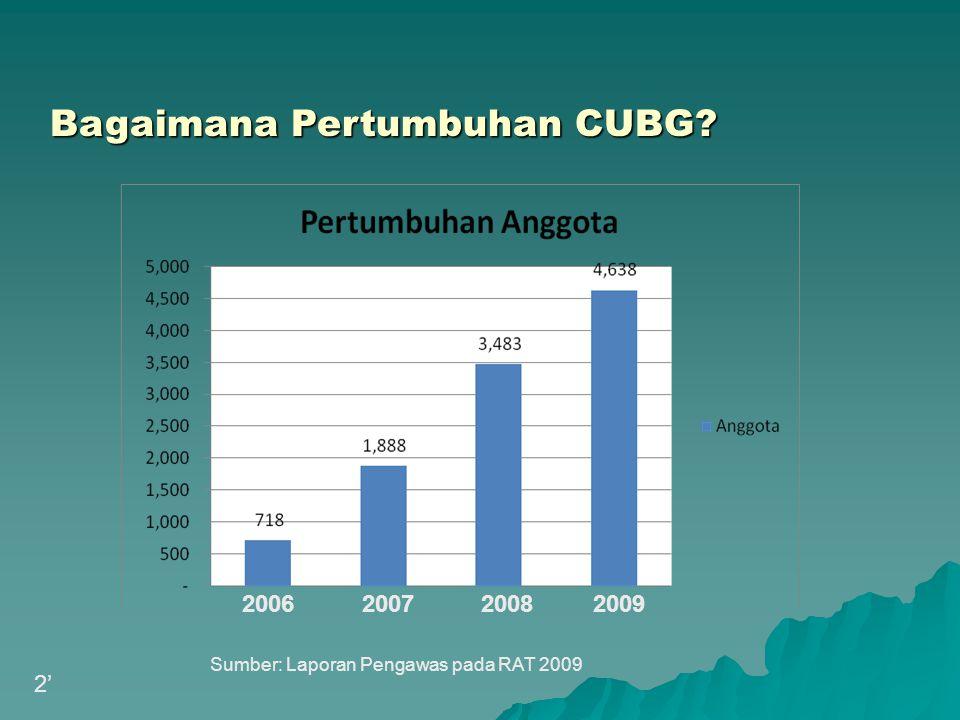 Bagaimana Pertumbuhan CUBG? Sumber: Laporan Pengawas pada RAT 2009 2' 20062007 2008 2009