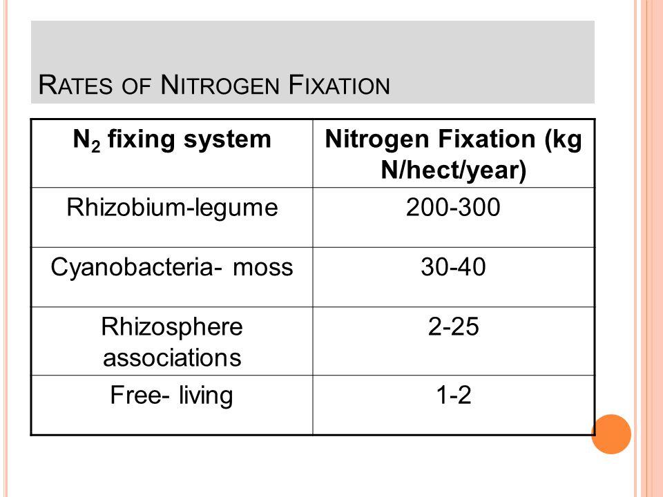 M ICROORGANISMS FIXING Azobacter Beijerinckia Azospirillum Clostridium Cyanobacteria Require the enzyme nitrogenase Inhibited by oxygen Inhibited by a